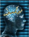 Tìm hiểu về bệnh Động kinh